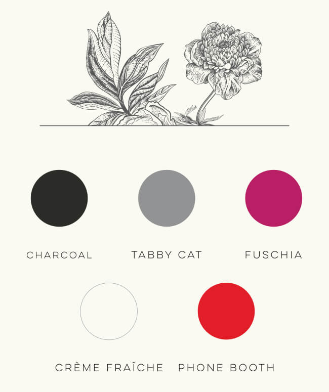 wild roots brand color palette and black line illustrations of flowers