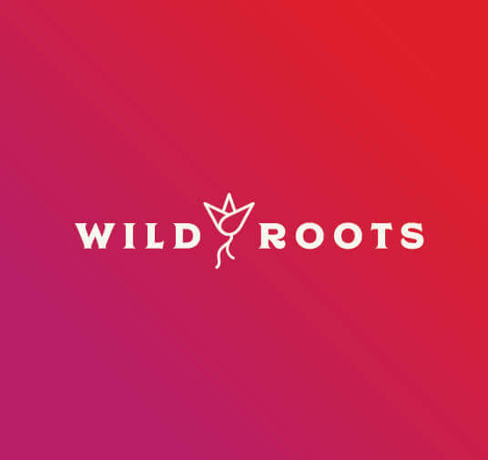red and pink gradient background with wild roots word mark