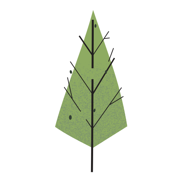 woodland icon of green pine tree